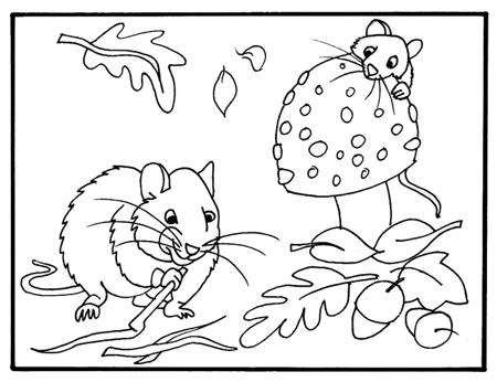 Kleurplaat muis, Volkstuinvereniging Blijdorp Rotterdam